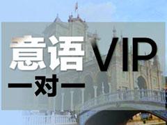 外专外语意大利语VIP一对一课程