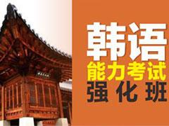 韩语能力考试强化课程